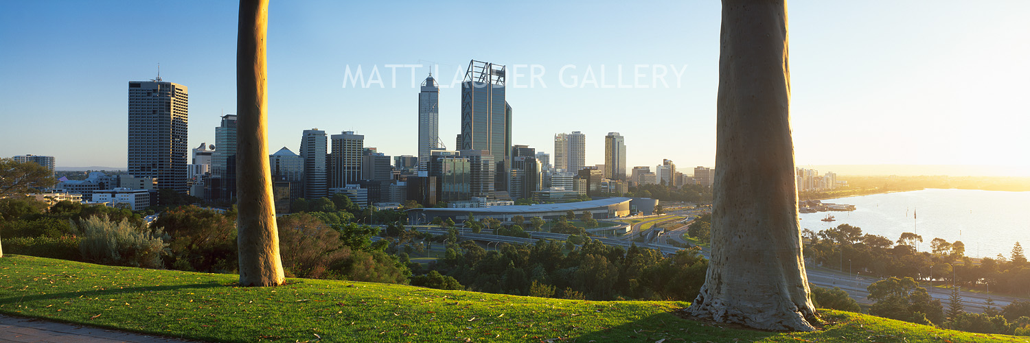 Kings Park Perth Photos Click Above to View Our