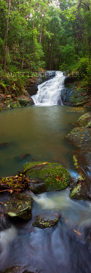 Kondalilla Falls