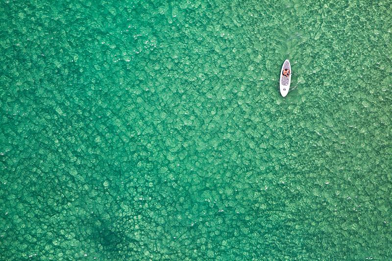 Paddle Boarder, Bondi