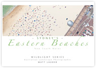 Sydney's Eastern Beaches Landscape Picture Book