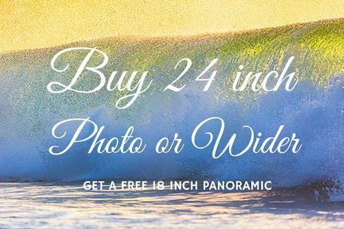 Free 18 inch Photo