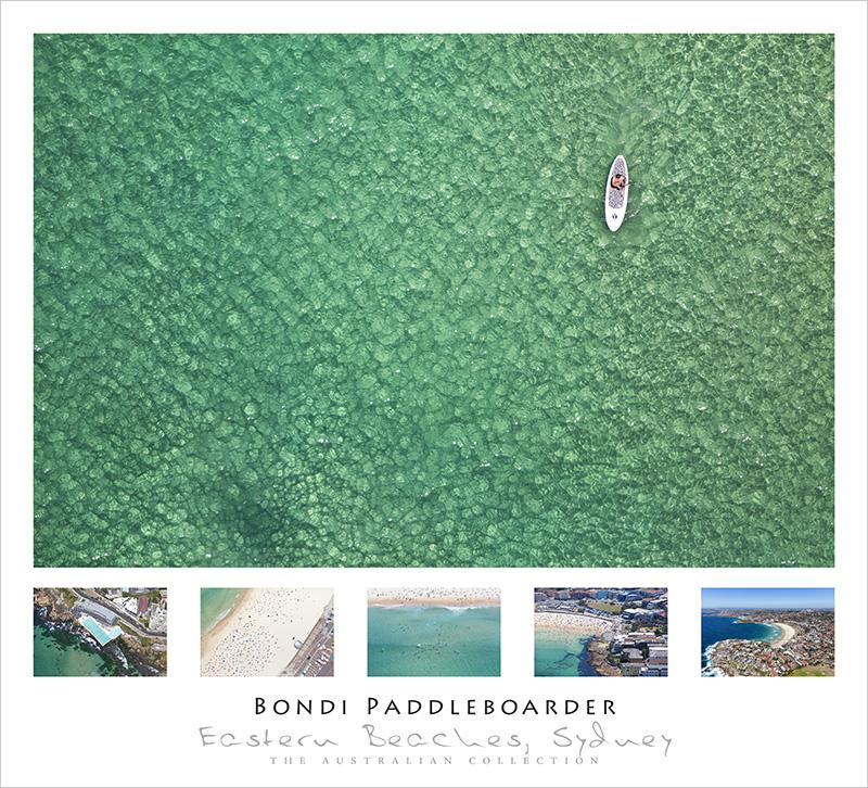 Bondi Paddle Boarder