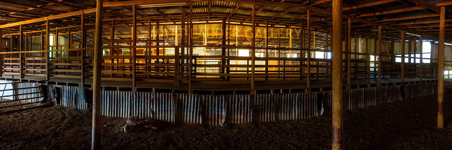 Mafra Shearing Shed images