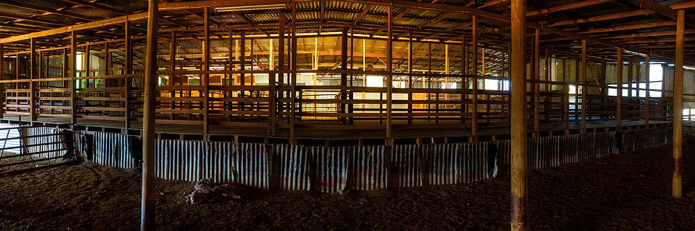 Shearing Shed Mafra Photos