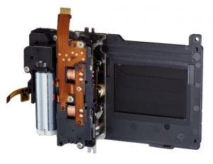 Canon 5D MkIII Shutter