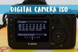 What is Digital ISO and How to Use It.