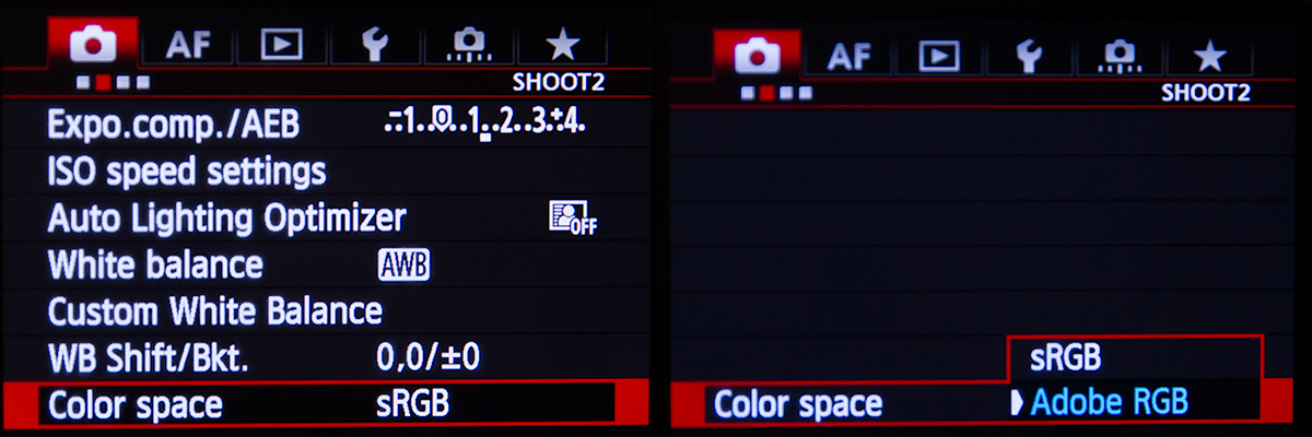 Canon 5D Mk III Colour Space