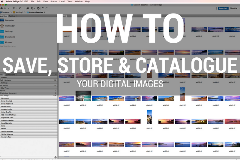 How to Save Store and Catalogue Your Digital Files