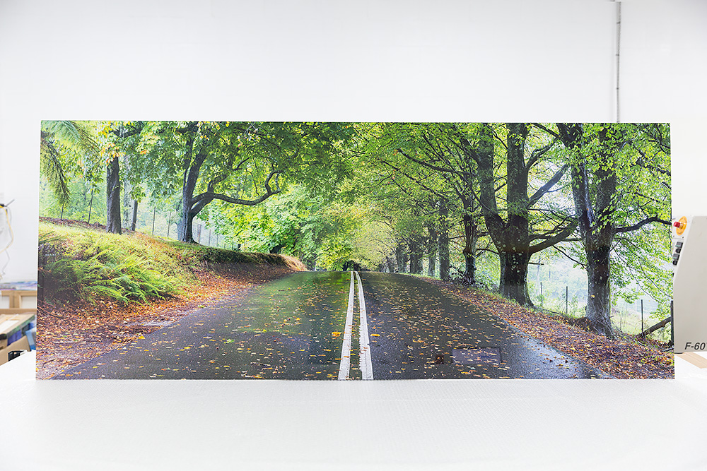 A massive 80 inch wide acylic glass photo of Mount Wilson in the Blue Mountains