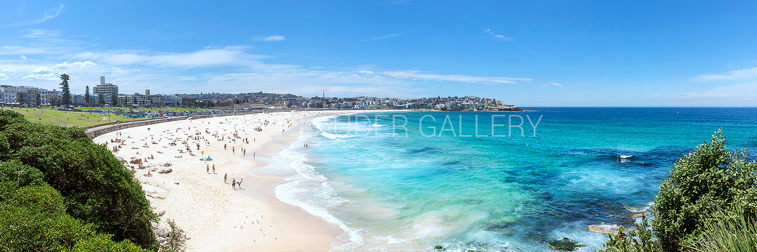 Bondi Beach Sydney Summer Daytime Photos