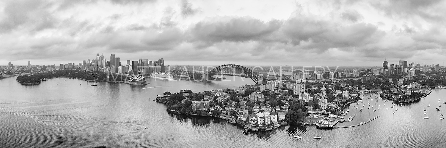 Sydney City Wide Angle Black and White Photos Chatswood