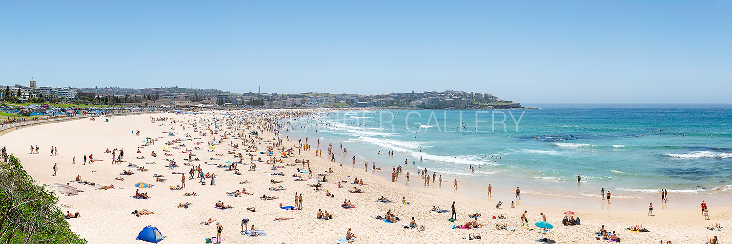 Bondi Beach Summer Panoramic Images