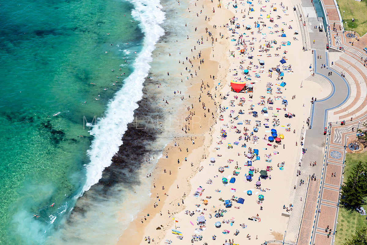 Coogee Beach Aerial Landscape Images Canvas Art