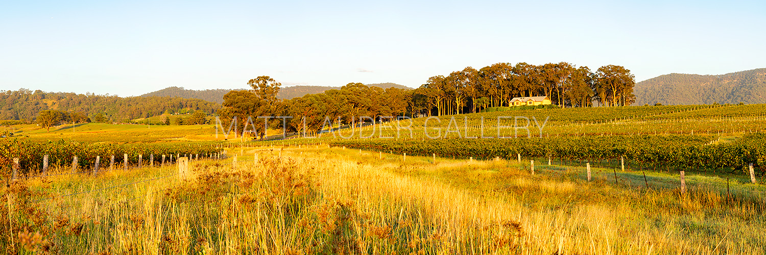 Hunter Valley Panoramic Prints